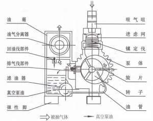 XD旋片式真空泵